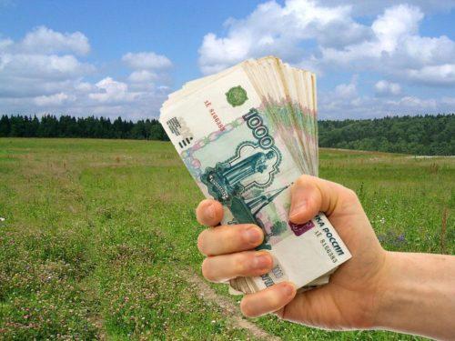Как взять в долгосрочную аренду землю у государства с последующим выкупом под бизнес, сельское хозяйство, ИЖС