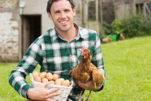 Кредит на фермерское хозяйство
