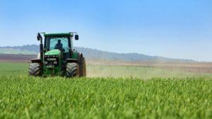Перечень документов для оформления развития сельского хозяйства