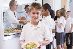 Положено ли бесплатное лечебное питание для детей-инвалидов, обучающихся в школе, на дому, сколько дают