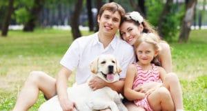 Льготы многодетным семьям в Пензенской области
